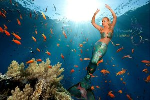 Mermaid Melissa and Saving the World's Oceans