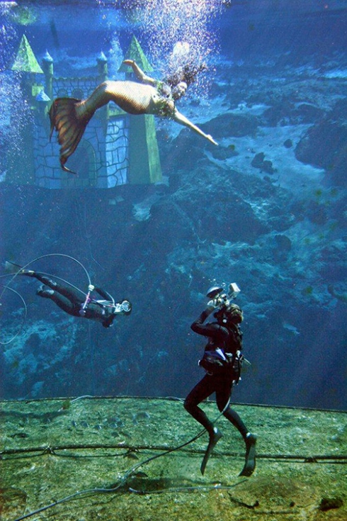 Andrew photographing the mermaids; photo by John Athanason