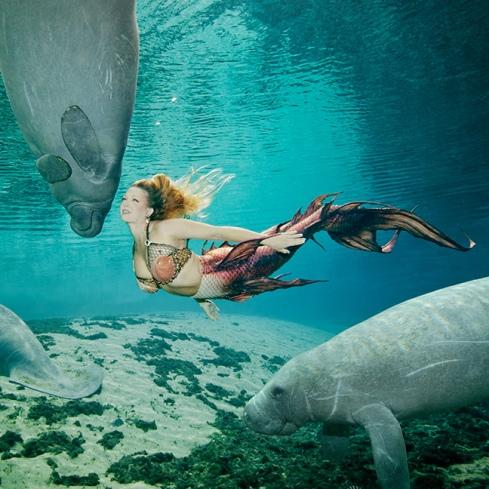 Mermaid_Karri_web